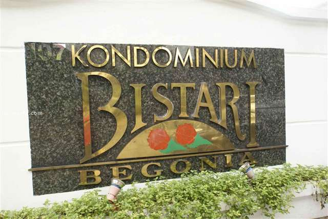 Bistari Begonia - Photo 1