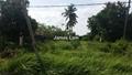 AGRICULTURE LAND, SITIAWAN, Sitiawan