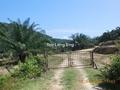 KERLING 100 ACRES AGRI LAND, , Kuala Kubu Baru