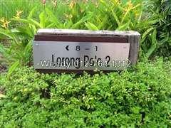 Leisure Farm - Polo View, Gelang Patah