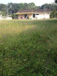 Big Land Bungalow at Desa Makmur, Kulim, Taman Desa Makmur, Kulim