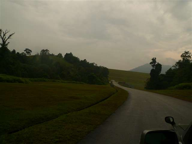 view of Rubber Land