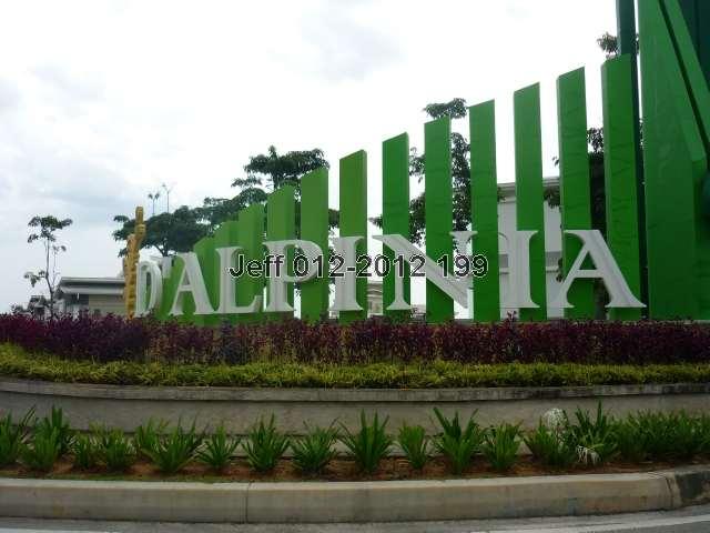 D'Alpinia