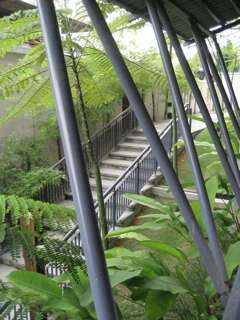 Garden/Jogging Path